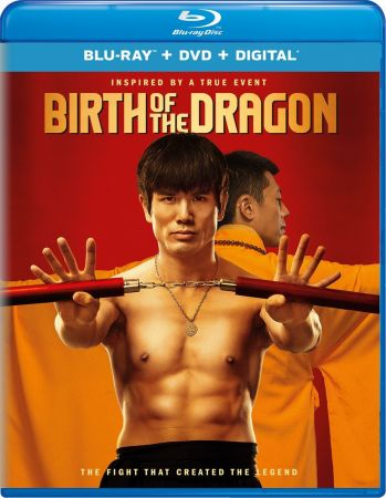 Birth of The Dragon 2017 720p Bluray