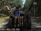 http//i98.fastpic.ru/thumb/2017/1128/1c/833e373efdc1fe0801ecf4c3a327e01c.jpeg