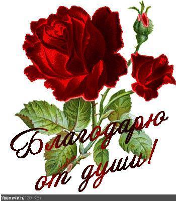 Поздравляем с Днем Рождения Татьяну (tanya2014) 0b8d0e9eac4452f01c9a96078569485e